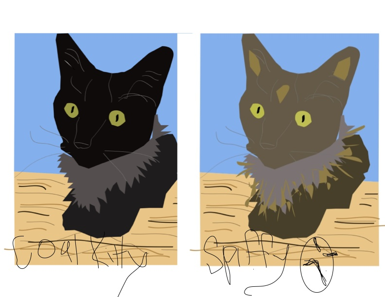 coal kitty and spiffy